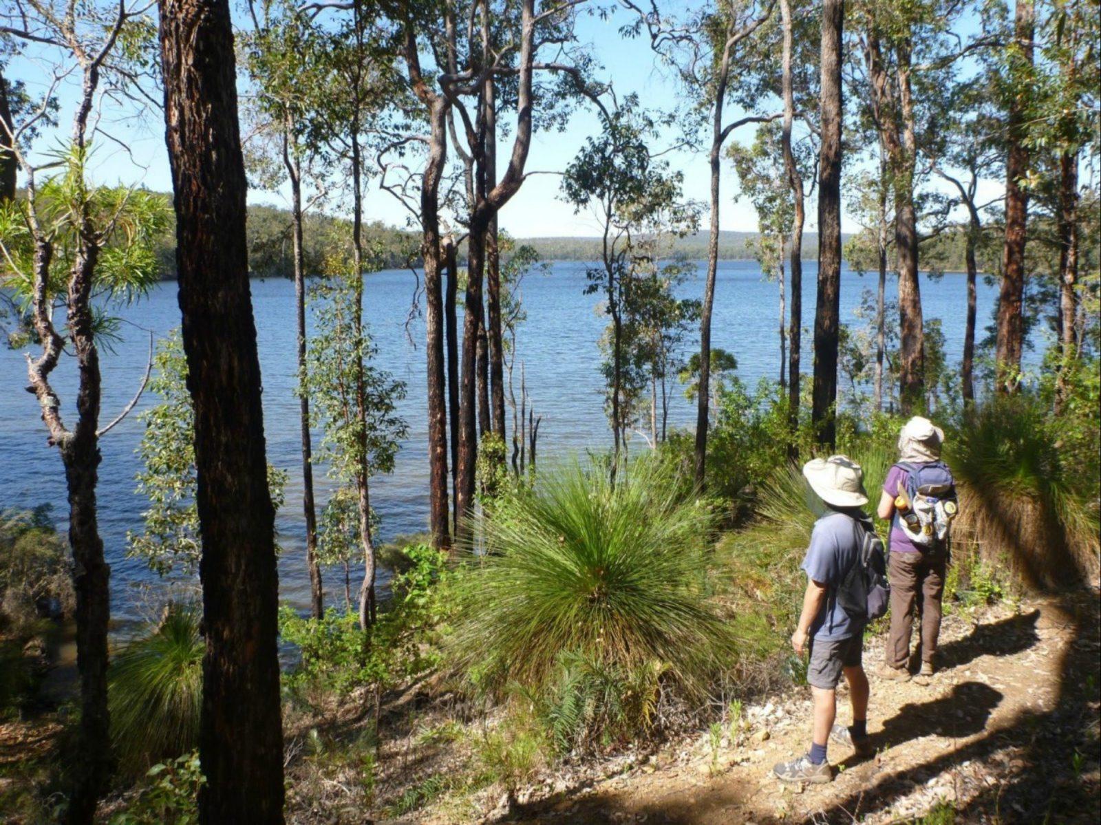 Wellington Discovery Forest, Bunbury, Western Australia