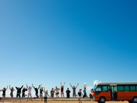 Why Not Bus, Lesmurdie, Western Australia