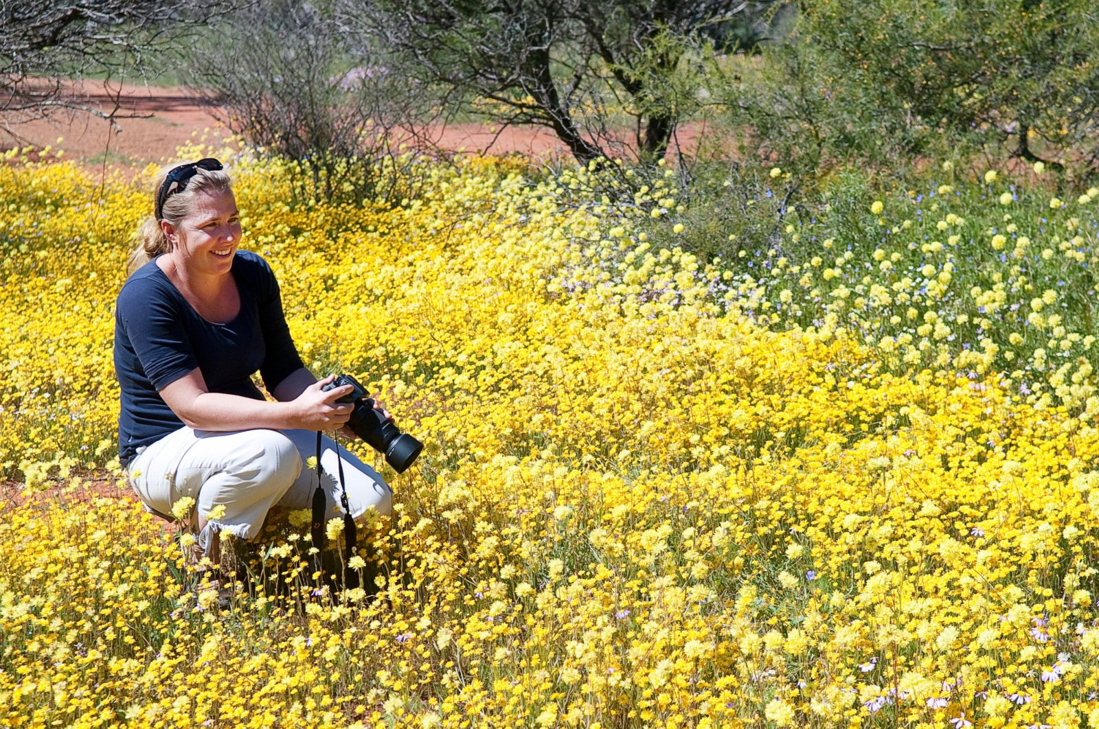 Coalseam Conservation Park , Western Australia