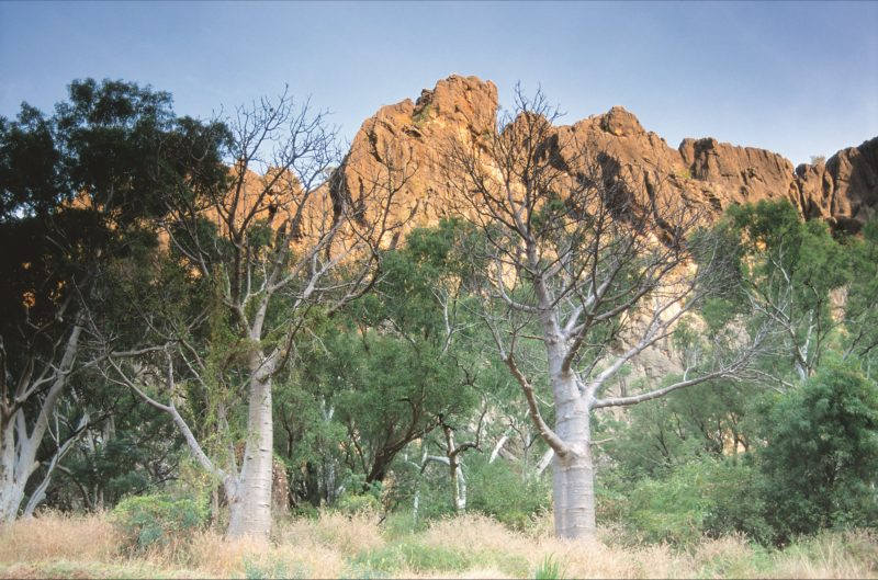 Windjana Gorge National Park, Derby, Western Australia
