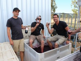 Wine for Dudes, Margaret River, Western Australia