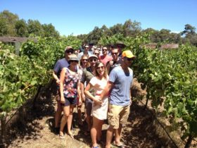 Wine for Dudes, Margaret River, Western Australia