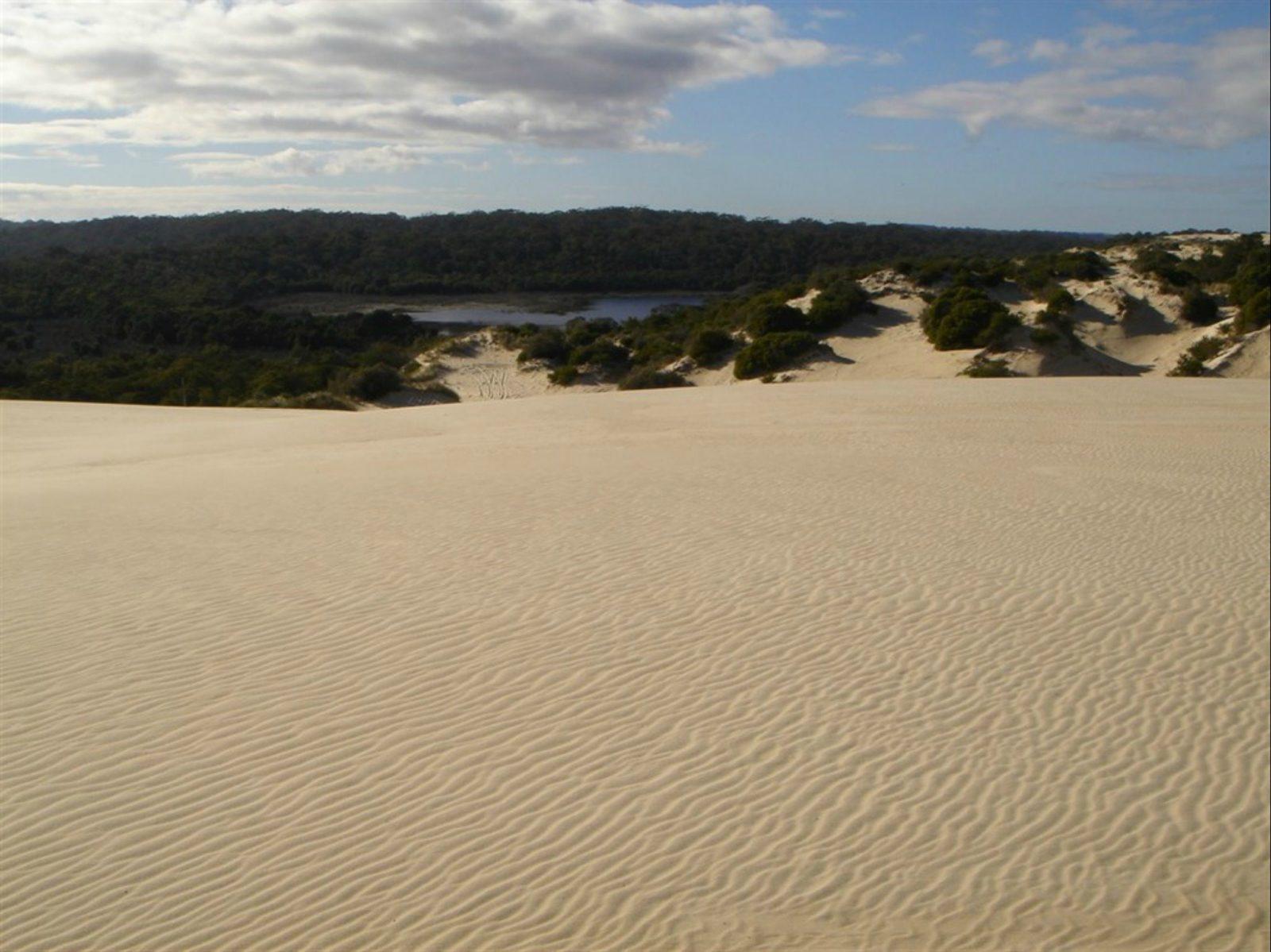 Yeagerup Sand Dunes, Pemberton, Western Australia