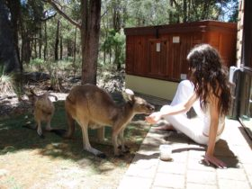 Yelverton Brook Eco Spa Retreat and Conservation Sanctuary, Metricup, Western Australia